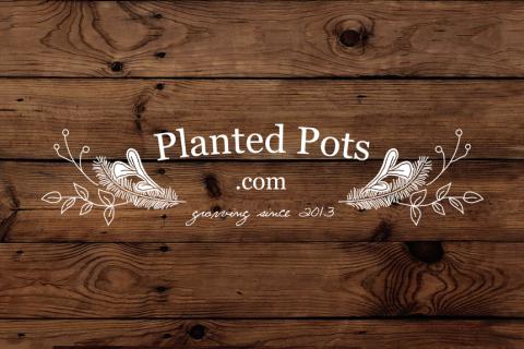 Planted Pots Logo